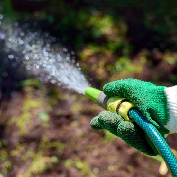 4 טיפים להקמת גינה חסכונית למים